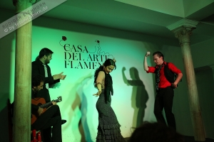 Flamenco Theater (2)