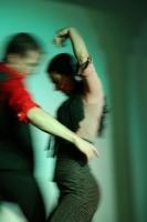 Flamenco Theater (1)