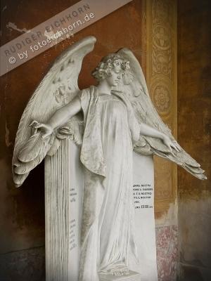 Engel Florenz