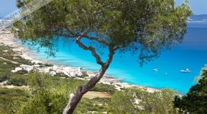 Formentera 064.jpg