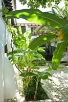 Na Xamena (2)