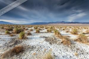 Death Valley (9).jpg
