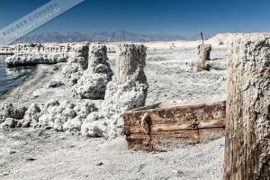 Salton Sea, Babylon Beach (1).jpg