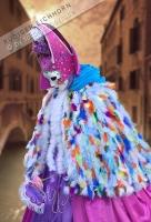 Karneval in Venedig Harlekin