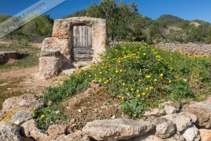 alter Brunnen, serra d'en sendic (2)