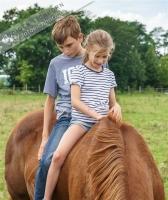 bei den Pferden (3)