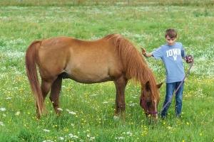 bei den Pferden (1)