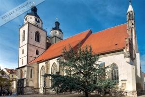 Sankt Marien zu Wittenberg 2015 (11)