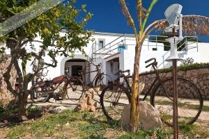 Bauernmuseum es Pujol  (2)