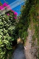 Burganlage (2)