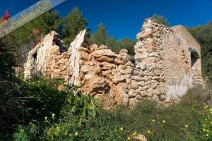 Finca Ruine Siesta (3)
