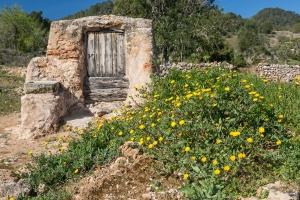 alter Brunnen, serra d'en sendic (3)