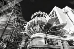 Vegas Flamingo.jpg