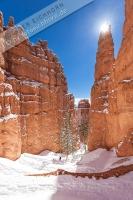 Bryce Canyon (17).jpg