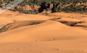 Pink Dunes (4).jpg